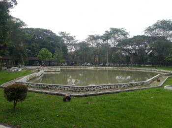 Examples of Water Pond at USU Campus (Near Central Library) 3