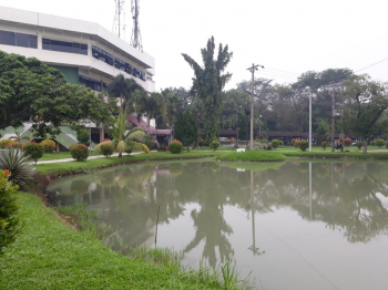 Examples of Water Pond at USU Campus (Near Central Library)